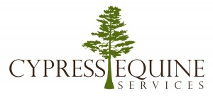 Cypress Equine Services, Megan Meyers DVM, Full Service Equine Ambulatory Veterinary Practice